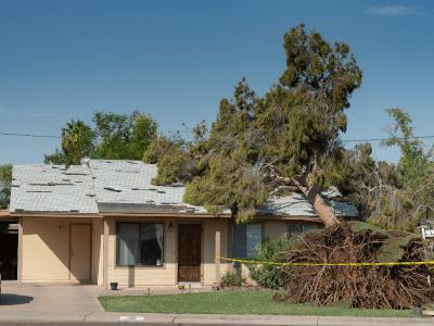roof-repair-contractors